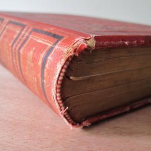 restauración de un libro del siglo XIX
